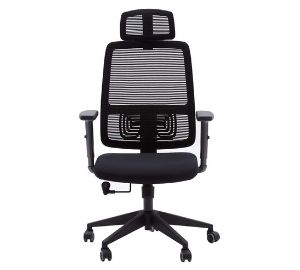 lumbar support office chair (1)